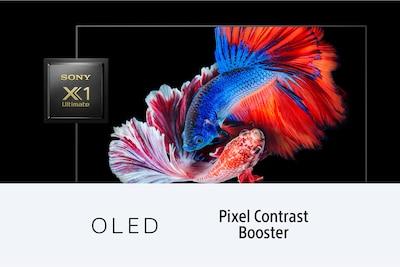 Pesce che mostra il contrasto di OLED