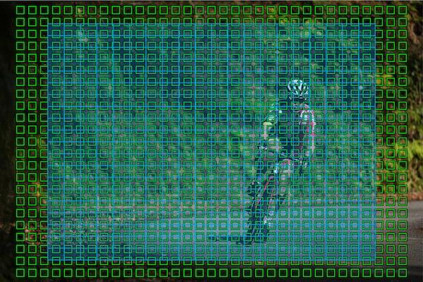 Aree del sensore AF che coprono quasi l'intera immagine