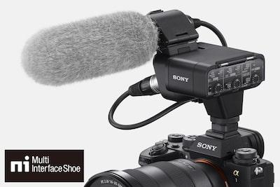 Microfono esterno collegato ad α1