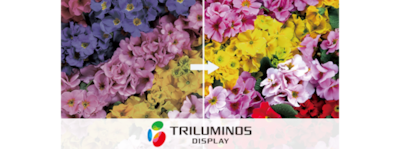 Logo TRILUMINOS Colour