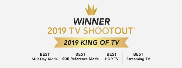 Vincitore 2019 King of TV