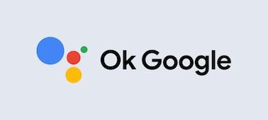 V redu Google logotip