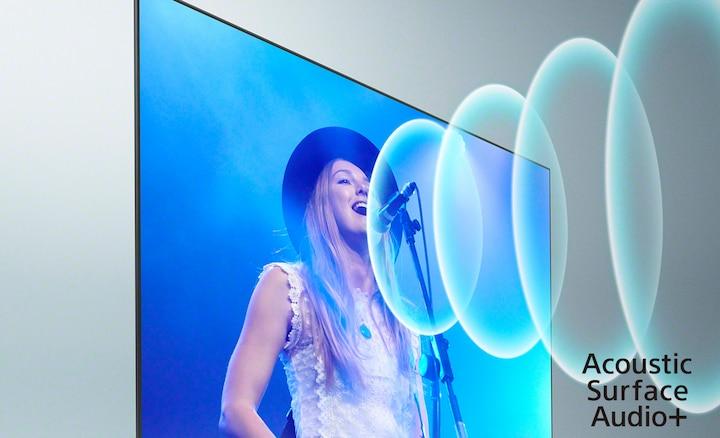 Immagine di un cantante al concerto