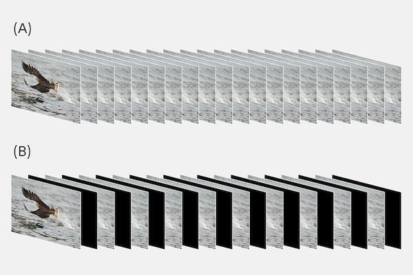 Sequenze di immagini con e senza interruzioni